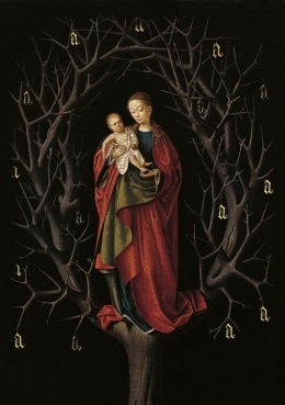 Our Lady of the Dry Tree